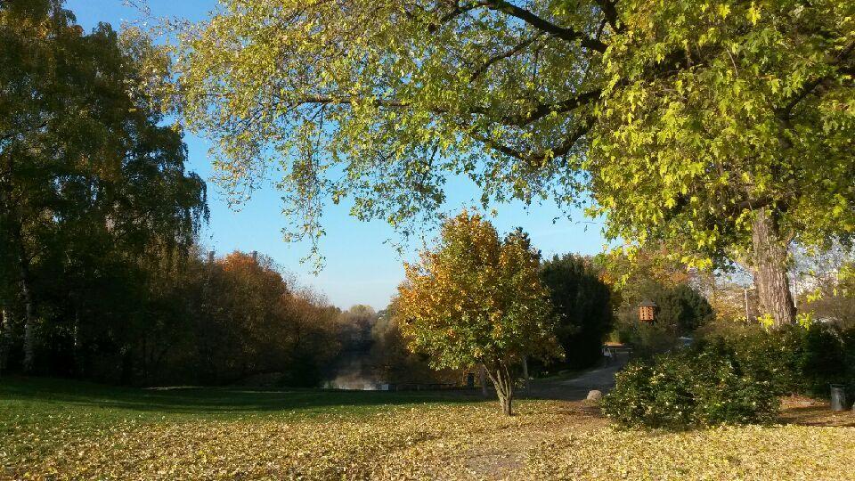 2.November Volkspark Wilmersdorf